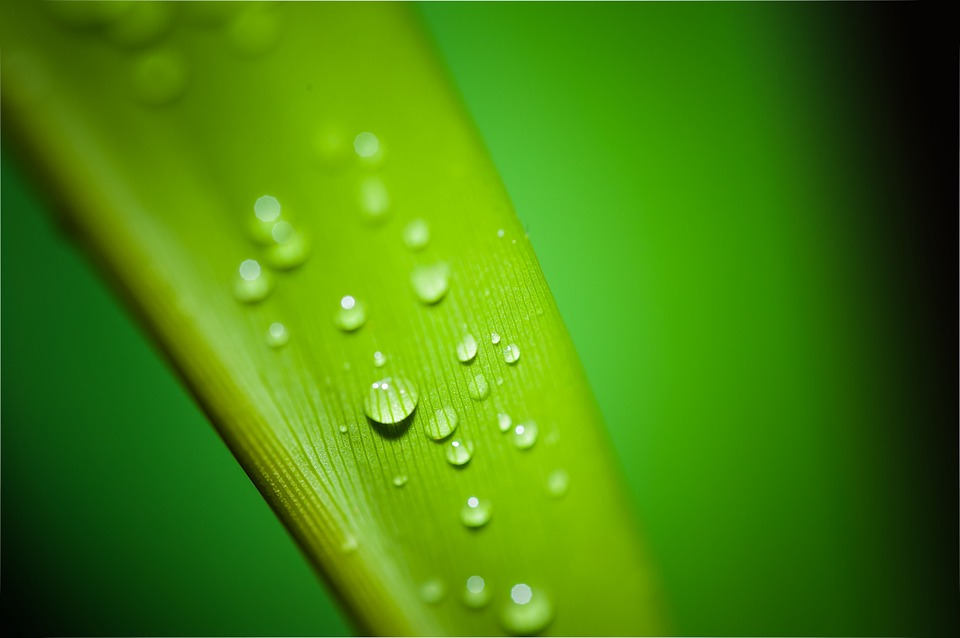 droplets-195838_960_720